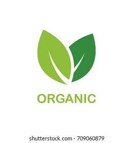 Leaf symbol, organic product badge, isolate on white background.  Vector. Illustration.