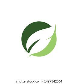 Leaf symbol vector icon illustration