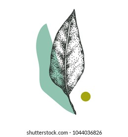 a leaf of a tree in a dotwork style with colored elements, green decoration, symbolic image, composition on a vegetable theme