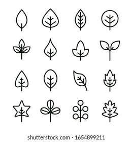 Leaf vector design line icon. Green line leaf plant outline symbol nature.