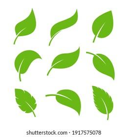 Leaf vector icon logo. Vegan leaves green eco flat herbal icon simple shape
