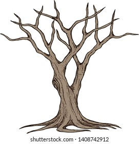 Leafless Tree, Dead Tree, Dry Tree, Trunk, Branches, and Root [Vector]