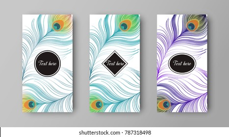 leaflet with green and purple peacock feathers, vector design of cover