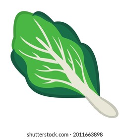 Leafy green emoticon isolated vector illustration. High quality flat style leafy green vector icon on white background