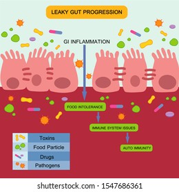 Leaky Gut Syndrome or Intestinal Permeability Diagram