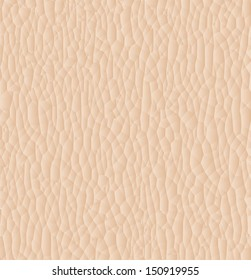 Leather texture closeup for background. Vector