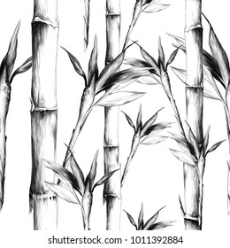 leaves branches stem bamboo pattern flowers texture frame seamless sketch vector graphics monochrome black-and-white drawing