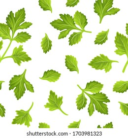 Leaves celery, parsley, cilantro. Seamless vector pattern on a white background.