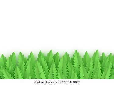 Leaves color green, object isolated on white background