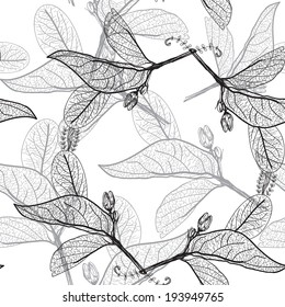Leaves contours on a white background. floral seamless pattern, hand-drawn. Vector