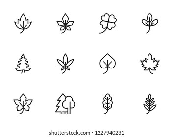 Leaves icon. Set of line icons on white background. Forest, fall, European flora. Trees concept. Vector illustration can be used for topics like season, botany, biology