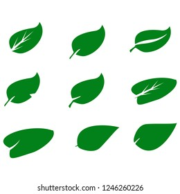 Leaves icon set.Green Leaves Collection. Vector Illustration