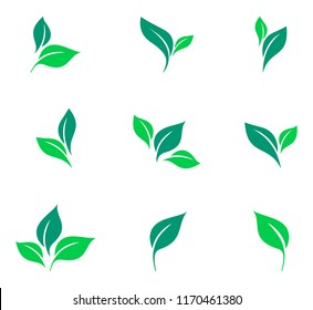 Leaves icon vector set isolated on white background. Various shapes of green leaves of trees and plants. Elements for eco and bio logos. Set of stickers and badges for organic food and drink.