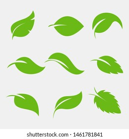 Leaves icon vector set isolated on white background. Various shapes of green leaves of trees and plants. Elements for eco and bio logos