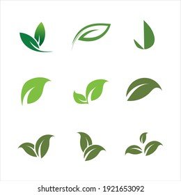 Leaves icon vector set isolated on white background. Various shapes of green leaves of trees and plants. Elements for eco and bio logos.