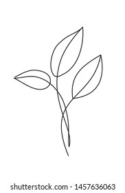 Leaves line drawing icon. Stylish abstract simple leaves. Vector