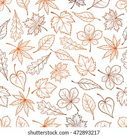 Fall Leaves Outline Images Stock Photos Vectors Shutterstock