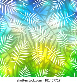 Leaves of palm tree on blurred background.