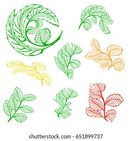 Leaves silhouette, collection on white background-vector