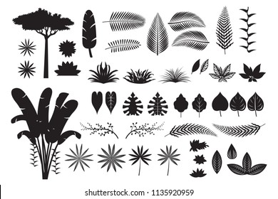 Leaves Tropical Jungle Silhouette Set, Forrest, Rainforest, Plant and Nature