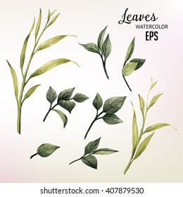 Leaves, watercolor, can be used as greeting card, invitation card for wedding, birthday and other holiday and  summer background. Vector illustration.