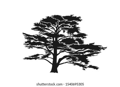 Lebanon cedar tree silhouette. trees and nature design element. isolated vector image of conifer