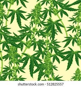 Legal Medicine Cannabis Marijuana Seamless Pattern Vector Illustration