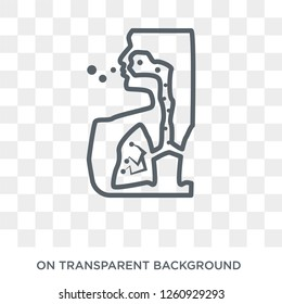 Legionellosis icon. Trendy flat vector Legionellosis icon on transparent background from Diseases   collection. High quality filled Legionellosis symbol use for web and mobile
