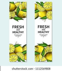 Lemon banner vector drawing. Citrus fruit frame template. Hand drawn summer illustration. Label, packaging design concept. Great for tea, juice, natural cosmetics, lemonade