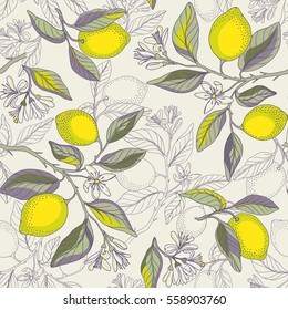 Lemon branches seamless pattern. Beautiful floral background. Botanical citrus plants. Vector illustration.