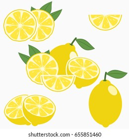Lemon. Citrus fruit with leaf - whole, half, slice. Vector illustration.