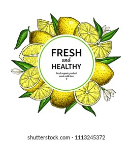 Lemon frame vector drawing. Citrus fruit circle label template. Hand drawn summer illustration. Flyerl, packaging design concept. Great for tea, juice, natural cosmetics, lemonade