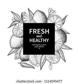 Lemon frame vector drawing. Citrus fruit engraved square label template. Hand drawn summer illustration. Vintage Flyer, packaging design concept. Great for tea, juice, natural cosmetics, lemonade