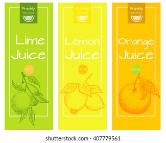 Lemon, lime and orange fresh juice label template for citrus fruit products. Vector design  for a package and packing box.