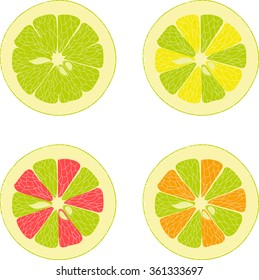Lemon, lime, orange, pink grapefruit, collection of vector illustrations on a transparent background