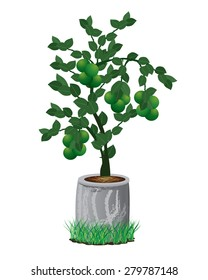lemon plant vector design