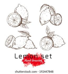 Lemon set, vector hand drawing