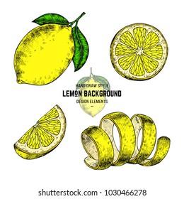 Lemon sketches. Hand drawn vector illustration lemon in engraving style. Citrus illustration elements. Lemons print for packaging, pattern, label.