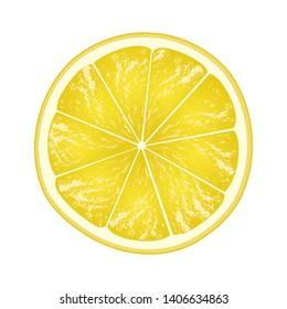 Lemon slice isolated on white background. Citrus in cross section. Vector illustration