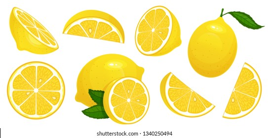 Lemon slices. Fresh citrus, half sliced lemons and chopped lemon. Cut lemons fruit slice and zest for lemonade juice or vitamin c logo. Isolated cartoon vector illustration icons set
