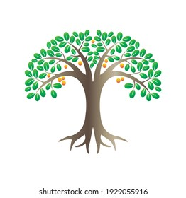 lemon tree vector illustration in cartoon styles