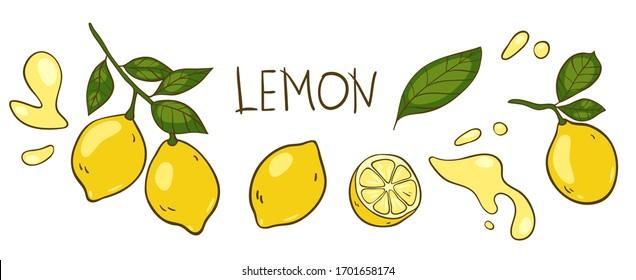 "Lemon vector elements and lettering set. The inscription ""lemon"", hand drawn outline of whole fruit, lemons on a branch, cut lemon, lemon leaves, splashes of juice. Line art and color on white."