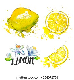 Lemon. Vector illustration