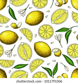 Lemon vector seamless pattern drawing. Summer citrus fruit print.  Isolated hand drawn whole lemon slice, flower and leaf.   Vegetarian tropical food. Great for wallpaper, fabric, packaging