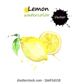 Lemon, watercolor painting on white background, vector illustration