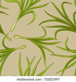 lemongrass vector pattern
