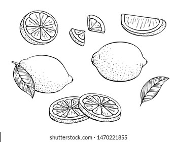 Lemons. Set of black and white citrus fruits. Whole lemon, slice, cut pieces, plant leaves. Vector hand drawn. Stylized linear illustration. Isolated on white background. Coloring book.
