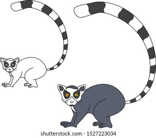 Lemur graphic icon. Lemur color sign (and black&white) isolated on white background. Lemur illustration.