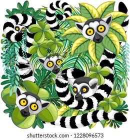 Lemurs og Madagascar on Rainforest Vector Illustration