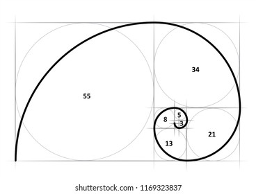 Leonardo da Vinci day. Golden ratio template spiral. Fun vector Circles in golden proportion icon or sign. Gometric or symmetry spiral logo. Drawing physics or math formula code grid Divine Proportion